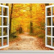 Vinyltek has some of the most energy efficient vinyl windows/doors out in the market