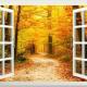 fall-pic-3