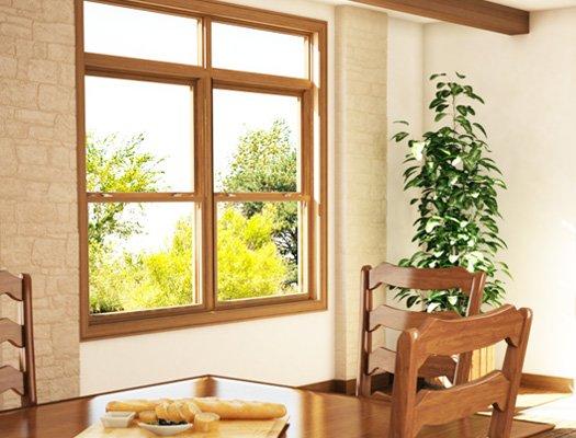 DoubleNature Vinyl Windows Look of Wood